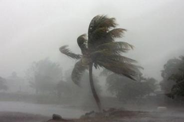 hurricane-ophila