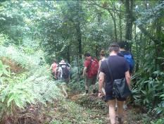 Dominica's Waitukubuli National Trail 4