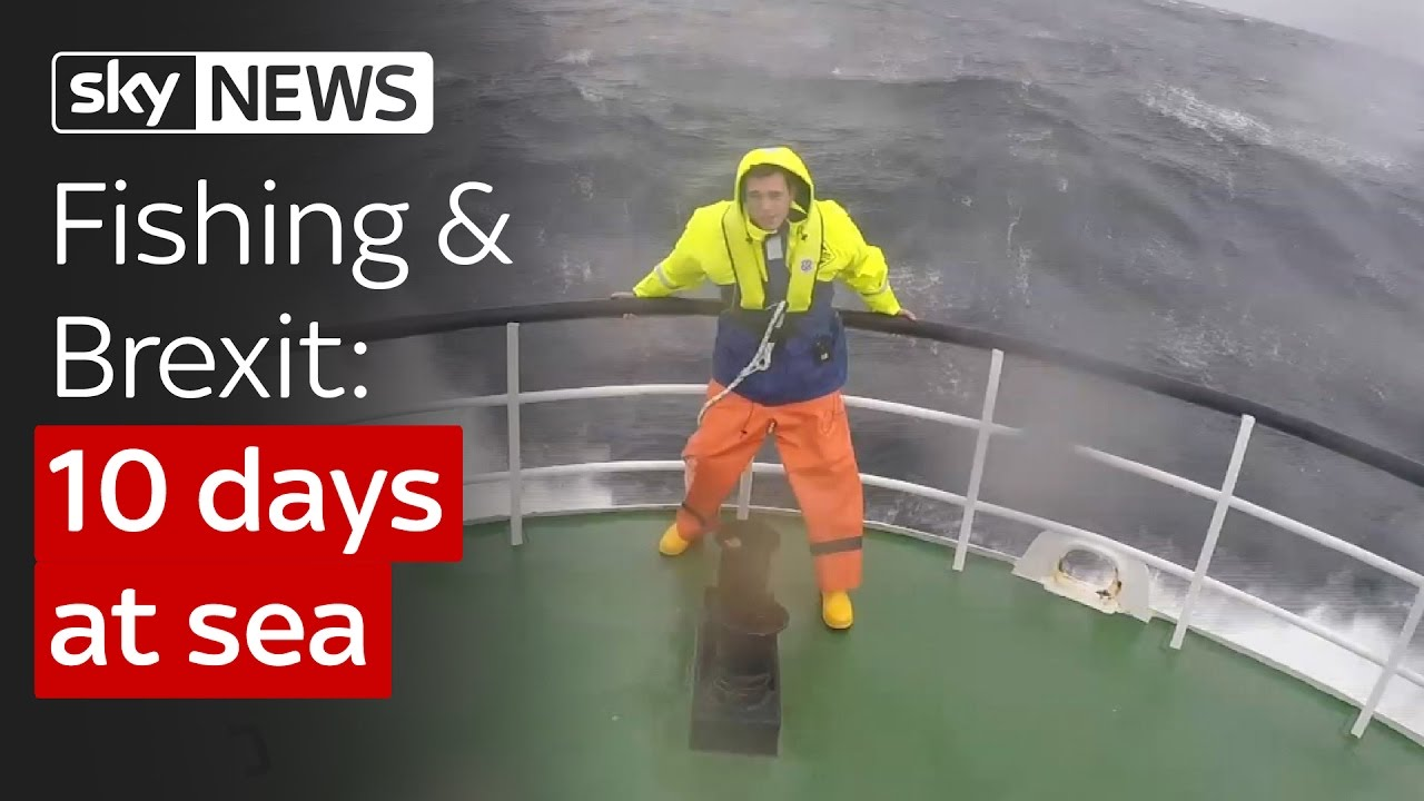 Spending 10 days at sea to learn about fishing and Brexit 11