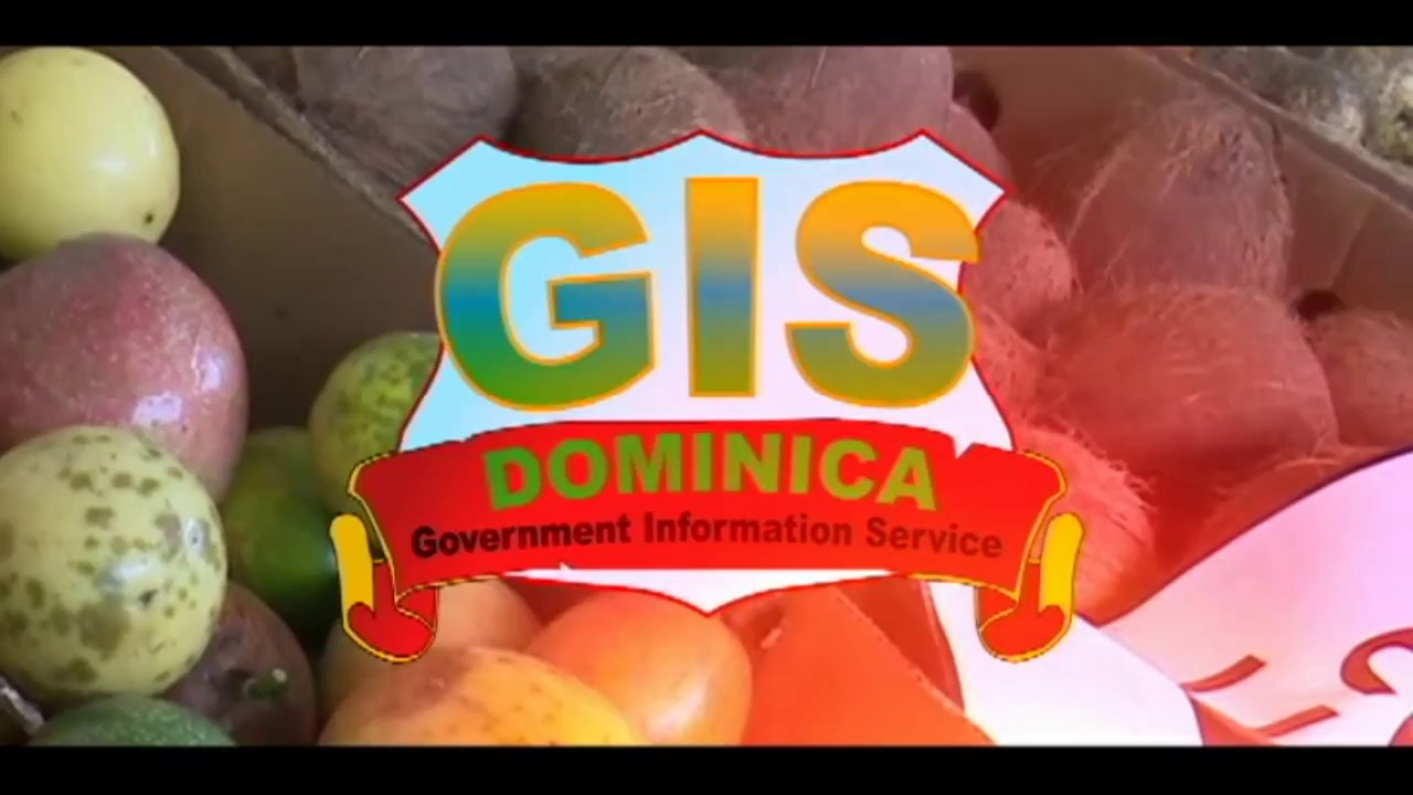 GIS Dominica National Focus for July 6, 2017 7