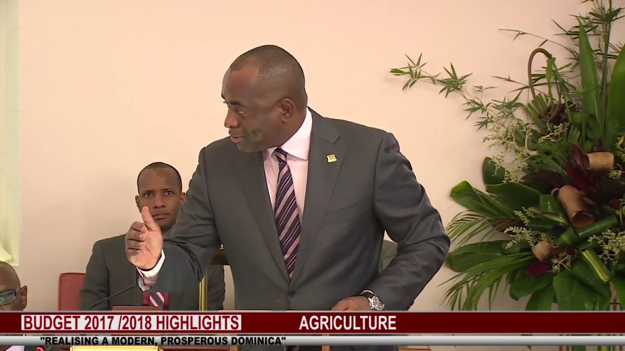 2017 2018 BUDGET HIGHLIGHTS :   AGRICULTURE 6
