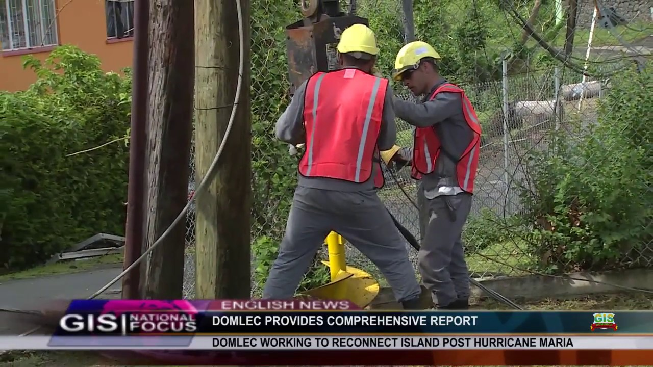 DOMLEC CONTINUES ITS EFFORTS TO RESTORE POWER 8