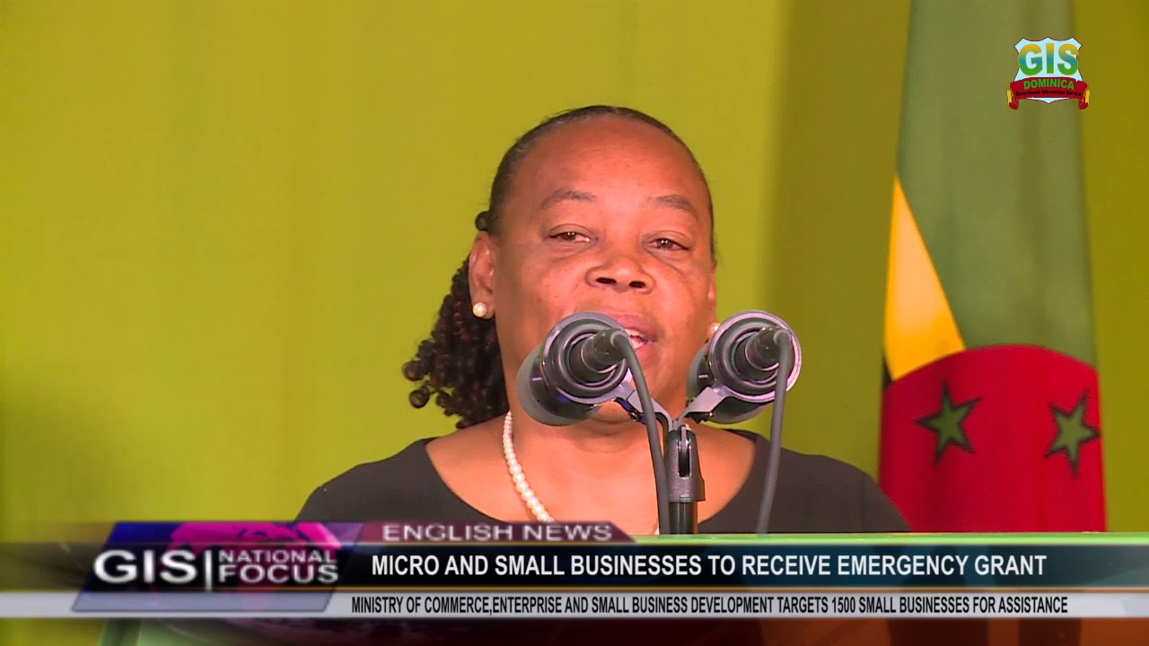 Small businesses to receive emergency grant 9