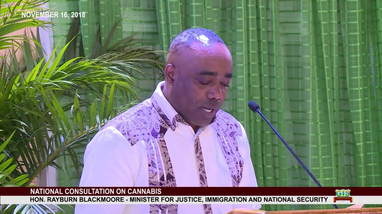 Hon. Rayburn Blackmoore addresses National Consultation on Cannabis 2
