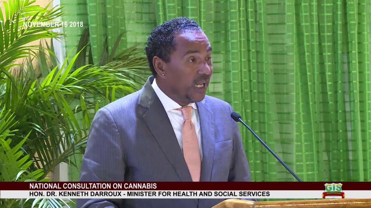 Minister for Health Dr. Kenneth Darroux addresses National Consultation on 13