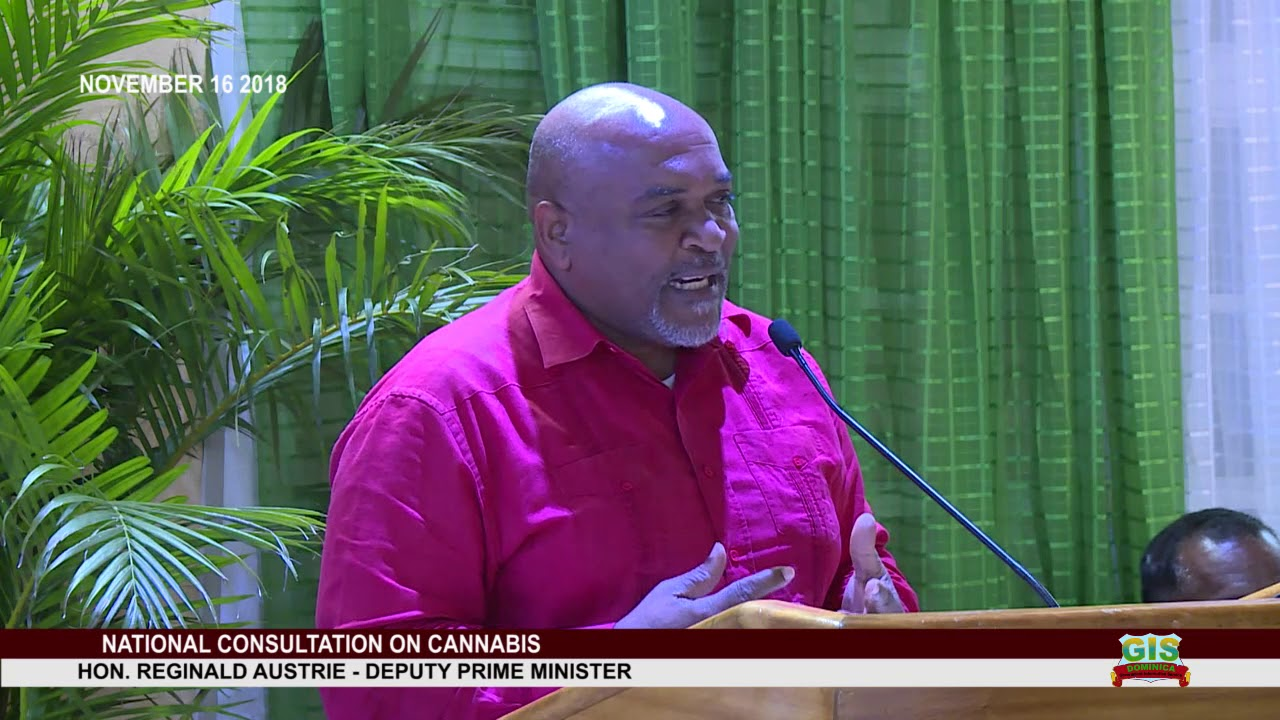 DEPUTY PRIME MINISTER HON. REGINALD AUSTRIE ADDRESSES NATIONAL CONSULTATION ON CANNABIS 5