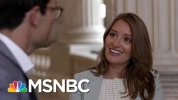 American Swamp | Four-Part Special Series | MSNBC 2