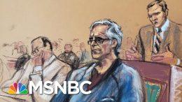Flight Risk, Danger To Community Cited By Judge For Epstein Bail Denial | Craig Melvin | MSNBC 6