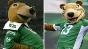 Can you spot the difference? The new Saskatchewan Roughriders mascot has some fans fuming 2