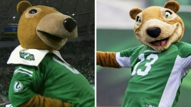 Can you spot the difference? The new Saskatchewan Roughriders mascot has some fans fuming 6