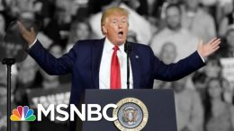 Trump Says He Tried To Stop 'Send Her Back!' Chant Aimed At Omar. He Didn't. | The 11th Hour | MSNBC 8