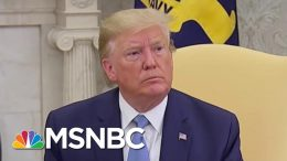 President Donald Trump: 'I'm Not Going To Be Watching' Mueller Testimony Before Congress | MSNBC 9