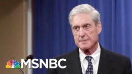 Lawmakers At Mueller Hearing Should 'Ask Very Short Questions' | MTP Daily | MSNBC 7