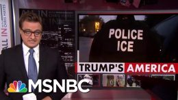 American Held By Immigration Released After Three Weeks | All In | MSNBC 5