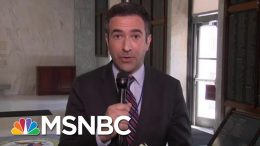 Ari Melber: Robert Mueller Inferring That President Donald Trump Is A Liar, But Not A Crook | MSNBC 7
