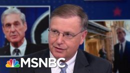 Chuck Rosenberg On Robert Mueller Testimony: The Book Was Better Than The Movie | MSNBC 5