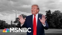 Fmr. Federal Prosecutor Alksne: My Hunch Is Trump's Gotten Away With It   The 11th Hour   MSNBC 5