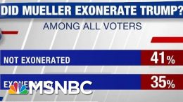 Poll: 41% Don't Think Mueller Exonerated Trump | Hardball | MSNBC 6