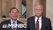 Senators Call For Oversight In Olympic Sports | Morning Joe | MSNBC 4