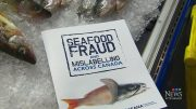 This personal scanner could help consumers detect food fraud 2