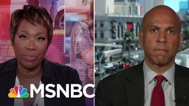 Booker On El Paso: Trump Is Responsible To Do Something About This | MSNBC 8