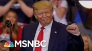 Poll: Voters Say Half The 2020 Democrats Running Can't Beat Donald Trump | The 11th Hour | MSNBC 4