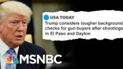 The Secret To Passing A New Assault Weapons Ban | The Beat With Ari Melber | MSNBC 2