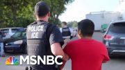 ICE Raid Speaks Louder Than Donald Trump Platitudes On El Paso Shooting | Rachel Maddow | MSNBC 5