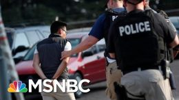 Children Left in Tears After Undocumented Workers Swept Up in ICE Raids - The Day That Was | MSNBC 3