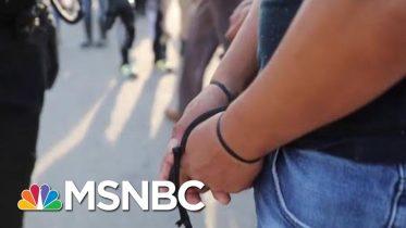 School Superintendent Describes Impact Of ICE Raids | Morning Joe | MSNBC 1