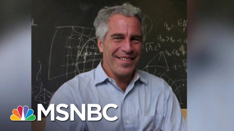 Jeffrey Epstein Dies By Suicide In His Jail Cell | MSNBC 1