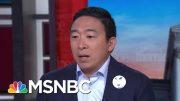 Andrew Yang Proposes 'Personalized' Guns As Way To Stem Violence | Morning Joe | MSNBC 3