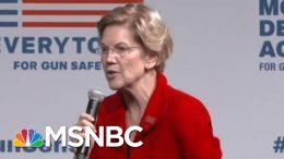 Democratic Candidates Show Unity On Gun Control In Wake Of Shootings | Hardball | MSNBC 5