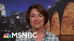 Senator Amy Klobuchar On Her New Gun-Safety Proposal   All In   MSNBC 2