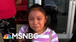 ICE Chief Shown Video Of Crying Girl Separated From Migrant Dad | Andrea Mitchell | MSNBC 9
