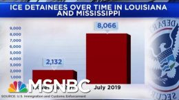 New Frontline In Immigration Battle As Thousands Detained In LA And MS | Andrea Mitchell | MSNBC 7