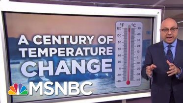 Record Summer Temperatures Raise Climate Change Fears | Velshi & Ruhle | MSNBC 2