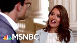 American Swamp | Four-Part Special Series | MSNBC 1