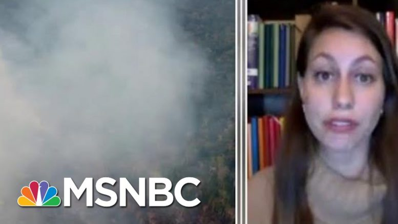 Full Lopes: Amazon Wildfire Will Be Discussed At G-7 Emergency Meeting | MTP Daily | MSNBC 1