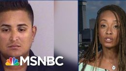 ACLU Lawyer Sounds Off On Treatment Of Migrant Detainees | The Beat With Ari Melber | MSNBC 3