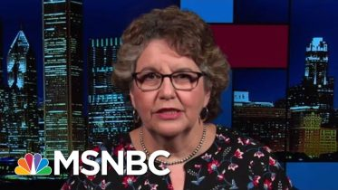 FEC Hobbled By Resignations Going Into 2020 Campaign Season | Rachel Maddow | MSNBC 2