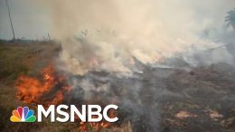 Ramping Up Climate Crisis: Trump's New Environmental Rollback | All In | MSNBC 2