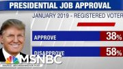 New Polls: Trump's Approval Rating Slipping | Hardball | MSNBC 5