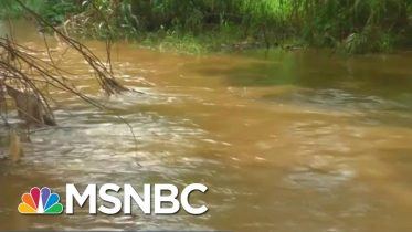 Trump Expected To Finalize Rollback Of Clean Water Protections | Velshi & Ruhle | MSNBC 10