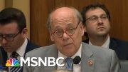 Rep. Steve Cohen Claims Lewandowski 'Chickened Out' From Carrying Out Trump's Orders | MSNBC 2