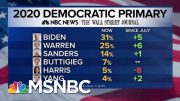 NBC/WSJ Poll: Joe Biden, Warren Rising, Harris Plummets | MTP Daily | MSNBC 3