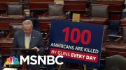 New PSA Designed To Jolt The Gun Debate In Washington Out Of Its Stalemate | Deadline | MSNBC 3
