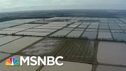 Historic Midwest Floods Expose Fragile Ecosystem | All In | MSNBC 2