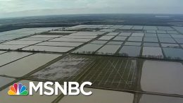 Historic Midwest Floods Expose Fragile Ecosystem | All In | MSNBC 8