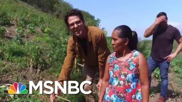 Trump Admin. Ignored Own Report On Climate Impact On Guatemalan Migration | All In | MSNBC 10